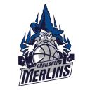 logo_crailsheim_merlins